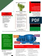 black economics pamphlet (1)