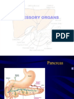 Accessory Organs Ppt