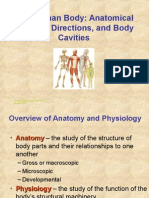 anatomy chapter 1 anatomical regions (chapter 1).ppt