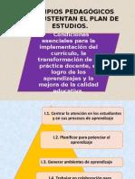 Principios Pedagogicos. Instituto Windsor