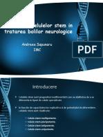 Utilizarea Celulelor Stem in Tratarea Bolilor Neurologice