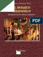 Mosaico Chiapaneco Andres Fabregas