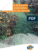 Guía Fanta de buenas prácticas sostenibles en el cultivo de cítricos.