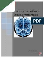 El Cerebro Ejecutivo. Resumen. Interesante, Muy Interesante. Resumen de La Asociación Educar