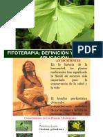 FITOTERAPIA CONCEPTOS GENERALES
