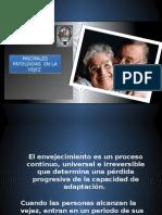 patologias-de-la-vejez.pptx