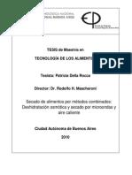 MTA-2010-Rocca.pdf