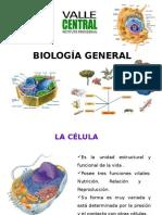 Clase 14-02 Valle Central (1).pptx