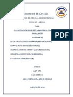 Derecho Proyecto Vendedores Ambulantes