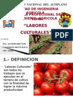 1.- Labores Culturales - Tcho