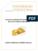 PLAN DE CUIDADOS DE ENFERMERIA RN CON ICTERICIA NEONATAL.docx