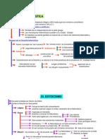 helenismo.pdf