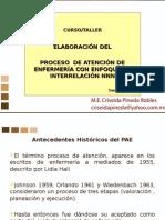 1curso Pae Generalidades Cpr10-2013