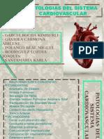 Patologias Del Sistema Cardiovascular