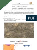 ESTUDIO GEOTECNICO - PTE JARUMA.docx