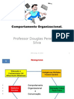 Comortamento Organizacional