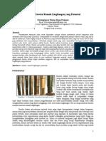 Artikel Bambu