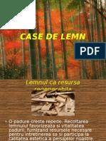 case_de_lemn-1