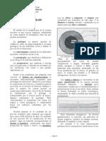 Fundaciones y Albañilería