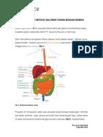 Info Sehat Mei 2010 Pencegahan Infeksi Saluran Cerna Bagian Bawah