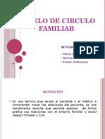 Modelo de Circulo Familia Extensa