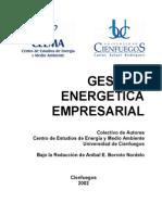 Libro Gestión Energética Empresarial.pdf