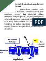 6_SISTEM SARAF.pptx