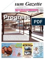 Platinum Gazette 06 March 2015