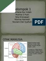 Anfis Otak Besar