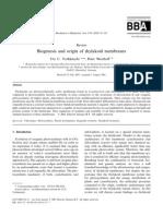 Biogenesis and Origin of Thylakoid Membranes