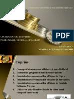 Companiile Offshore Si Paradisurile Fiscale