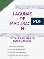 Lagunas de Maduracion