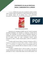 Relatório Aula Prática Lipidios Umidade Cinzas Carboidratos