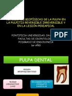 REACCIONES BIOFÍSICAS DE LA PULPA EN LA PULPITIS.pptx