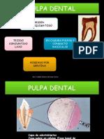 Reacciones Biofísicas de La Pulpa en La Pulpitis
