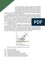 Relatorio C dinamico 5