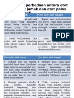 6_sistem otot.pptx