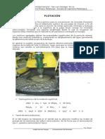 64767740-FLOTACION-DE-MINERALES.pdf