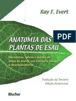 Anatomia das plantas de ESAU.pdf