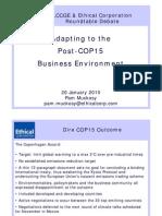 Post-COP15 Business Environment - 20 01 2010 Debate