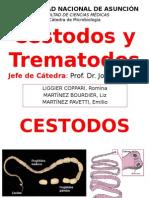 Cestodos y Trematodos