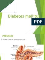 Diabetesmellitus 090519123626 Phpapp01[1]