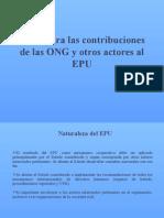 Bases Para Las Contribuciones de Las ONG INFORME