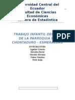 Informe Final Chontaduro (1)