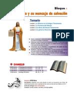 DOSIFICACION FE2B1.pdf
