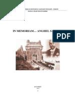 Anghel Saligny.pdf