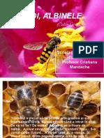 Apicultura Si Albinele Curs (2)