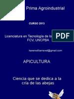 Apicultura Si Albinele Curs (6)