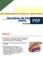 PMO_aula1 (1)