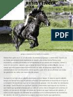 Galope Y Resistencia en el caballo de CCE